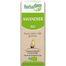 Herbalgem - Airelle Bourgeons Macérats-Mères Concentrés Bio - 30 ml