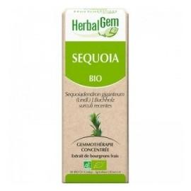 Herbalgem - Sequoia Bourgeons Frais Jeunes Pousses Bio - 30 ml