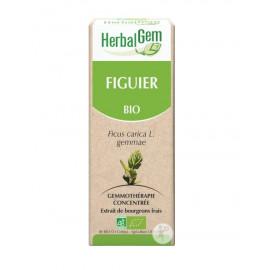 Herbalgem - Figuier Bourgeons Macérats-Mères Concentrés Bio - 30 ml